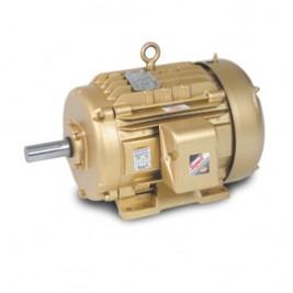 Baldor Electric EFM2513T 15 Hp, 1800 Rpm, 254T Fr, 230/460 Vac, 3 PH, ODP, Foot Mounted, Definite Purpose Motor